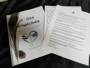 27 soul perspectives - soul alchemy book - by Danielle Lynn